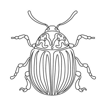 Vector design of insect and fly icon. Set of insect and element stock vector illustration.