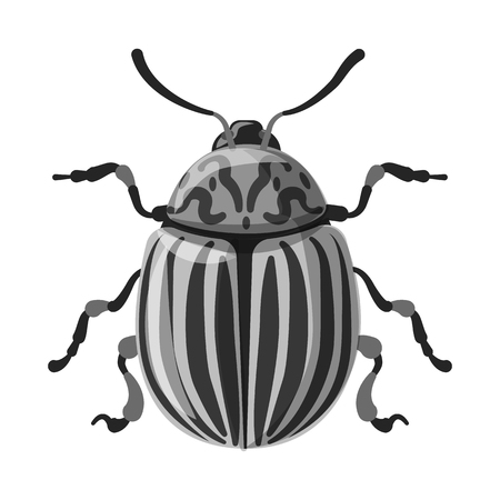 Isolated object of insect and fly sign. Set of insect and element stock symbol for web. Banque d'images - 115884018
