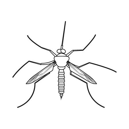 Vector design of insect and fly sign. Collection of insect and element stock symbol for web.