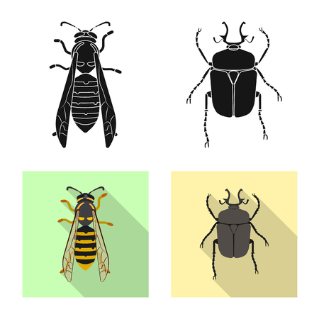 Isolated object of insect and fly symbol. Collection of insect and element stock symbol for web. Illusztráció