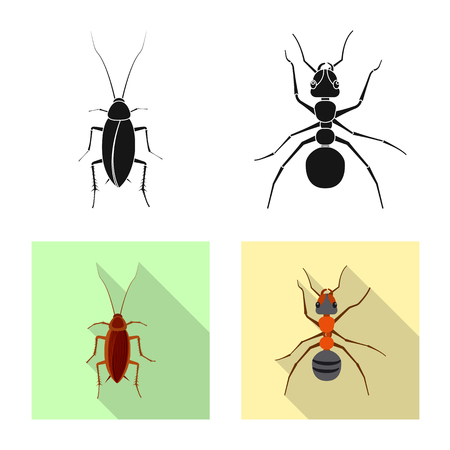 Vector illustration of insect and fly sign. Set of insect and element vector icon for stock. Illustration