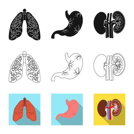 Vector illustration of body and human sign. Set of body and medical stock vector illustration. Illustration