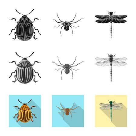 Isolated object of insect and fly symbol. Set of insect and element stock vector illustration. Banque d'images - 116164283