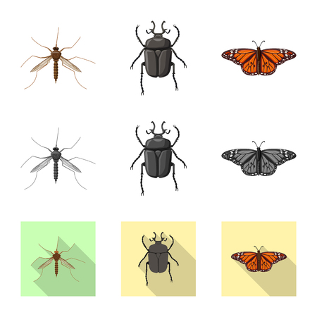 Vector illustration of insect and fly logo. Collection of insect and element stock symbol for web. 向量圖像