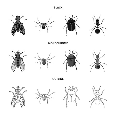 Vector illustration of insect and fly logo. Set of insect and element vector icon for stock.