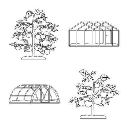 Vector design of greenhouse and plant logo. Set of greenhouse and garden stock vector illustration. Standard-Bild - 116252877