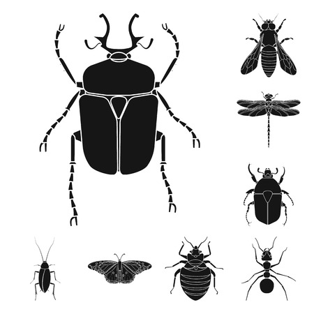 Isolated object of insect and fly logo. Collection of insect and element vector icon for stock. Illustration