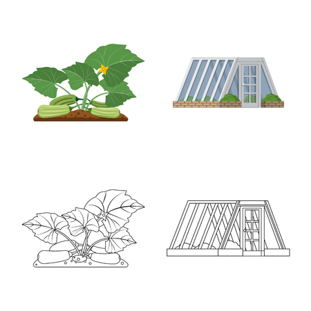 Isolated object of greenhouse and plant sign. Collection of greenhouse and garden stock vector illustration. Zdjęcie Seryjne - 116738771