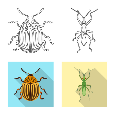 Isolated object of insect and fly icon. Set of insect and element vector icon for stock. Banque d'images - 116818184