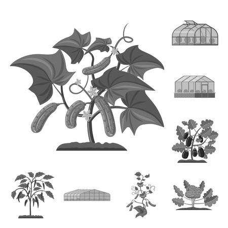 Isolated object of greenhouse and plant sign. Collection of greenhouse and garden stock symbol for web.
