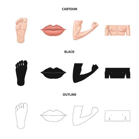 Illustrazione vettoriale di simbolo umano e parte. Raccolta di umani e donna icona vettore per stock.