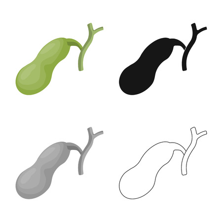 Vector illustration of body and human logo. Collection of body and medical vector icon for stock. 일러스트
