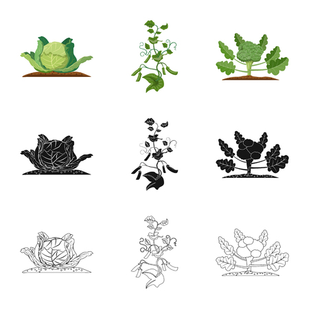 Isolated object of greenhouse and plant sign. Collection of greenhouse and garden vector icon for stock.