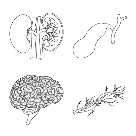 Vector design of body and human. Set of body and medical vector icon for stock. 일러스트