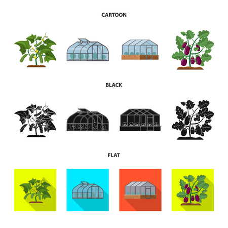 Vector illustration of greenhouse and plant. Collection of greenhouse and garden stock vector illustration.
