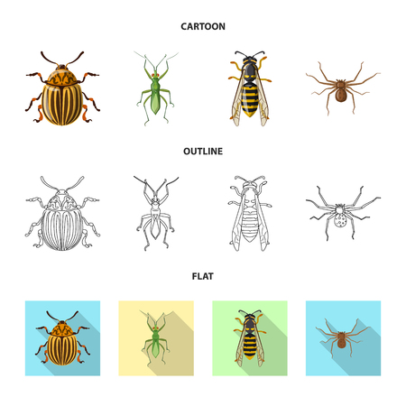Vector design of insect and fly. Collection of insect and element stock vector illustration.