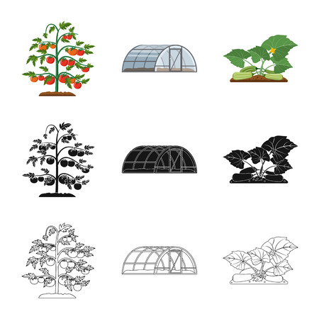 Vector illustration of greenhouse and plant icon. Collection of greenhouse and garden stock symbol for web. Zdjęcie Seryjne - 118147572