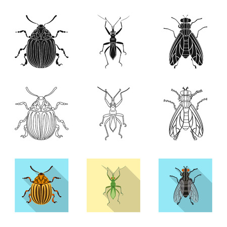 Vector illustration of insect and fly icon. Collection of insect and element vector icon for stock. Banque d'images - 118412825