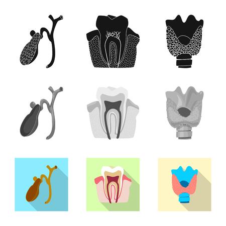 Isoliertes Objekt des Körpers und des menschlichen Zeichens. Satz Körper und medizinisches Vektorsymbol für Lager.