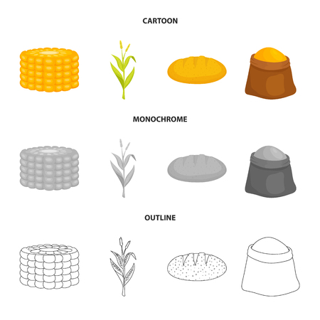 Isolated object of cornfield and vegetable. Set of cornfield and vegetarian vector icon for stock. 일러스트