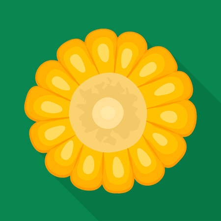 Vector design of corn and cob icon. Collection of corn and hot stock vector illustration. Ilustração