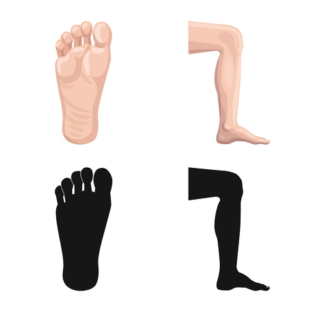 Diseño vectorial de icono humano y parte. Conjunto de símbolo de stock humano y mujer para web. Ilustración de vector