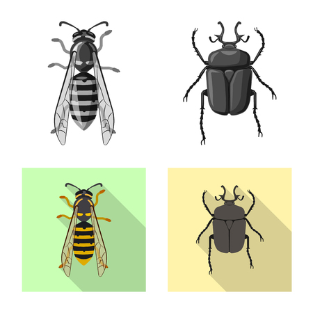 Isolated object of insect and fly sign. Set of insect and element stock vector illustration.