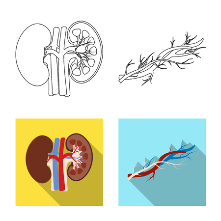 Vector design of body and human sign. Collection of body and medical stock vector illustration.