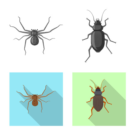 Isolated object of insect and fly icon. Set of insect and element stock vector illustration. 向量圖像