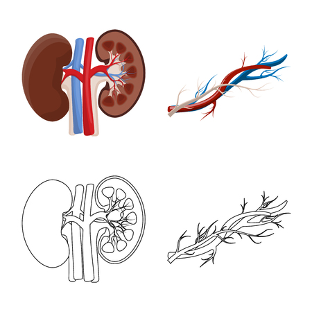 Vector design of body and human symbol. Set of body and medical stock symbol for web.