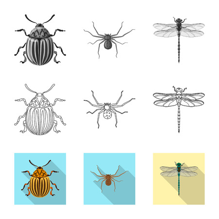 Vector design of insect and fly sign. Set of insect and element vector icon for stock.