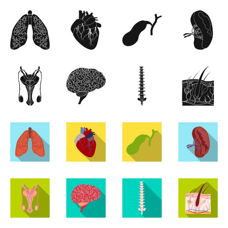 Isolated object of body and human icon. Collection of body and medical stock symbol for web.