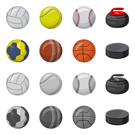 Isolated object of sport and ball. Set of sport and athletic stock symbol for web. Vektorové ilustrace
