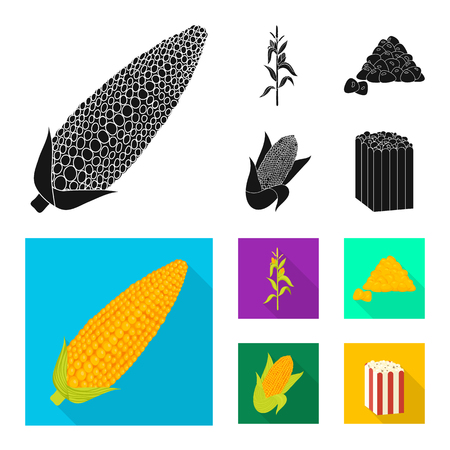 Vector illustration of cornfield and vegetable symbol. Collection of cornfield and vegetarian stock symbol for web.
