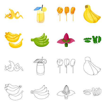 Vector design of natural and vegetarian icon. Collection of natural and eating stock vector illustration. Illustration