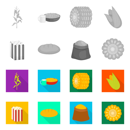 Vector design of cornfield and vegetable. Collection of cornfield and vegetarian vector icon for stock. 矢量图像