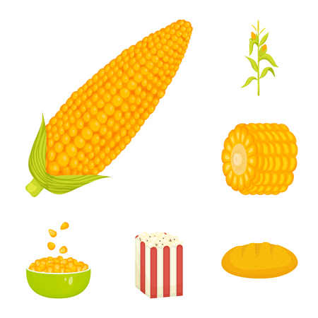 Vector illustration of maize and food logo. Collection of maize and crop vector icon for stock. Ilustração