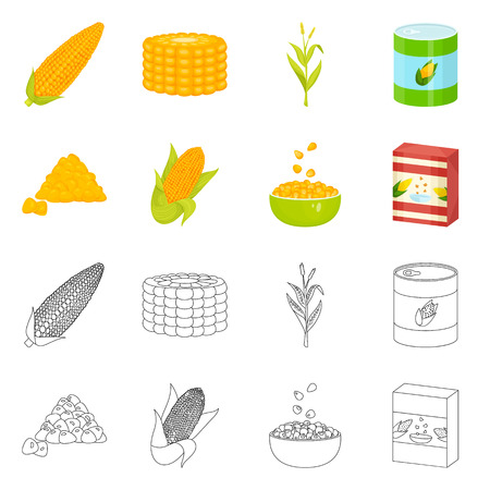 Vector design of cornfield and vegetable logo. Set of cornfield and vegetarian vector icon for stock.  イラスト・ベクター素材