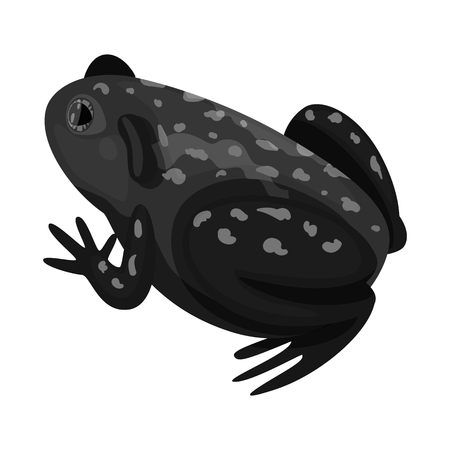 Vector illustration of toad and tropical symbol. Set of toad and ecology stock vector illustration. Иллюстрация