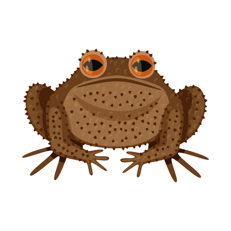 Vector design of toad and biology logo. Collection of toad and tropical vector icon for stock.