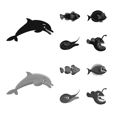 Isolated object of sea and animal icon. Collection of sea and marine stock symbol for web.