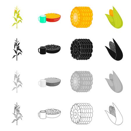 Vector illustration of cornfield and vegetable logo. Set of cornfield and vegetarian stock vector illustration.
