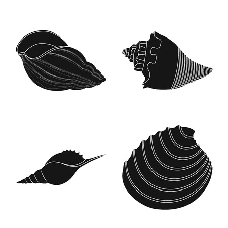 Vector design of nature  and ocean logo. Set of nature  and mollusk stock symbol for web.