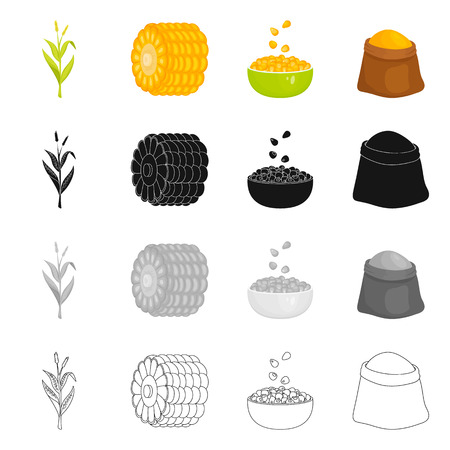 Isolated object of cornfield and vegetable icon. Collection of cornfield and vegetarian stock symbol for web.