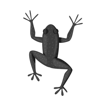Isolated object of toad and green logo. Set of toad and toxic vector icon for stock. Иллюстрация