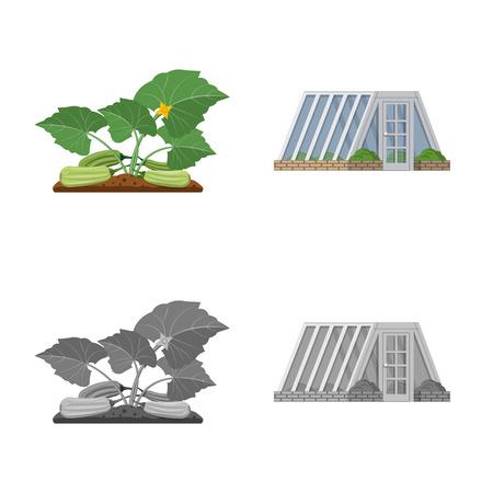Vector design of greenhouse and plant symbol. Collection of greenhouse and garden stock vector illustration. Ilustracja