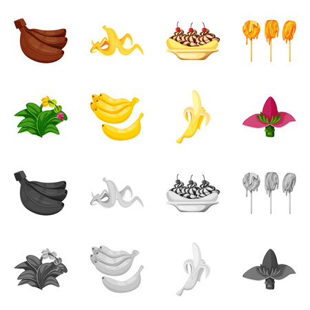 Isolated object of natural and vegetarian icon. Set of natural and eating stock vector illustration.