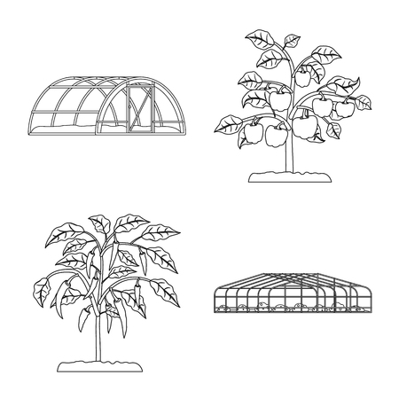 Isolated object of greenhouse and plant icon. Collection of greenhouse and garden stock vector illustration. Standard-Bild - 120972882