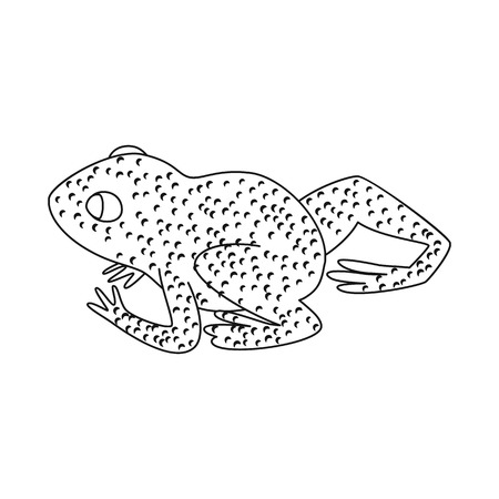 Vector design of toad and yellow icon. Collection of toad and rainforest stock symbol for web. Illustration