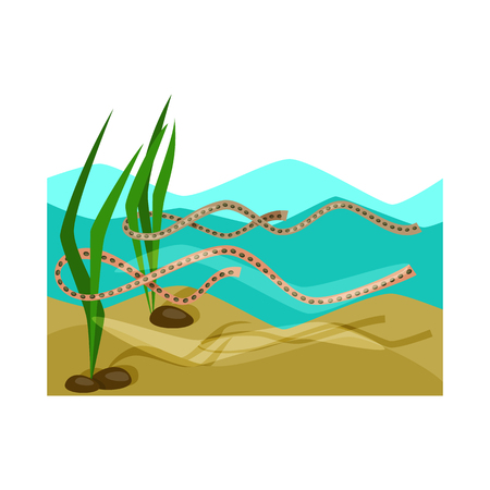 Vector design of wetland and grass symbol. Set of wetland and ecology vector icon for stock. Иллюстрация